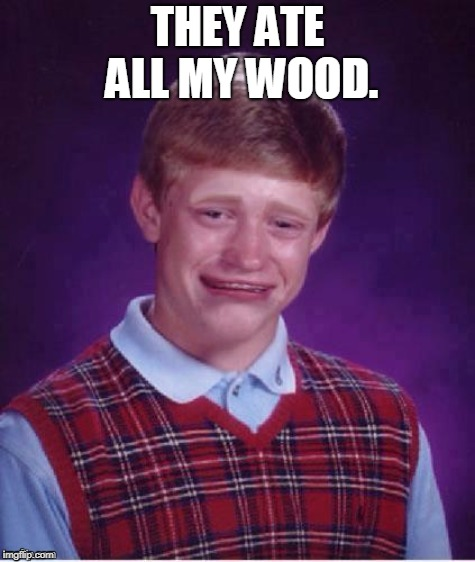 Sad brian | THEY ATE ALL MY WOOD. | image tagged in sad brian | made w/ Imgflip meme maker