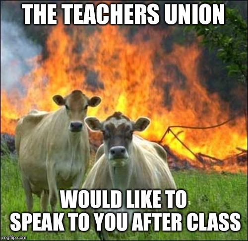 Evil Cows Meme | THE TEACHERS UNION WOULD LIKE TO SPEAK TO YOU AFTER CLASS | image tagged in memes,evil cows | made w/ Imgflip meme maker