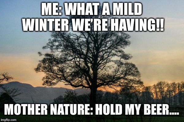NC WINTERS | ME: WHAT A MILD WINTER WE'RE HAVING!! MOTHER NATURE: HOLD MY BEER.... | image tagged in nc,cold weather,weather | made w/ Imgflip meme maker