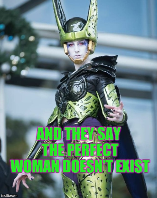 The perfect woman | AND THEY SAY THE PERFECT WOMAN DOESN'T EXIST | image tagged in dragon ball z,dragon ball z perfect cell,women | made w/ Imgflip meme maker