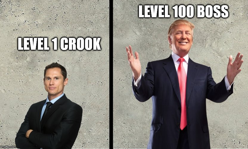 Mafia City Boss Meme | LEVEL 1 CROOK LEVEL 100 BOSS | image tagged in mafia city meme template,mafia,donald trump,crook,boss,memes | made w/ Imgflip meme maker