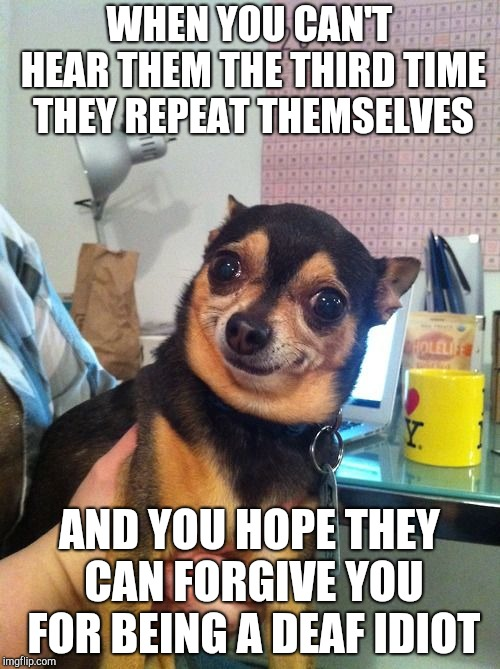 Chihuahua  | WHEN YOU CAN'T HEAR THEM THE THIRD TIME THEY REPEAT THEMSELVES AND YOU HOPE THEY CAN FORGIVE YOU FOR BEING A DEAF IDIOT | image tagged in chihuahua,memes | made w/ Imgflip meme maker