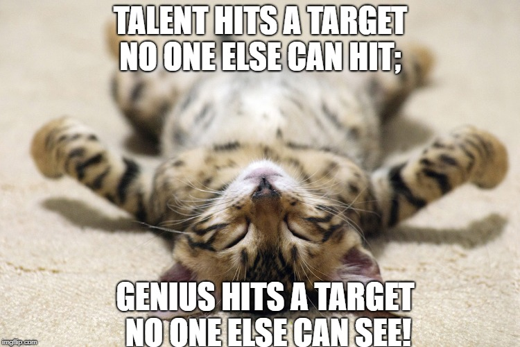 Smart kitteh! | TALENT HITS A TARGET NO ONE ELSE CAN HIT; GENIUS HITS A TARGET NO ONE ELSE CAN SEE! | image tagged in inspirational quotes | made w/ Imgflip meme maker