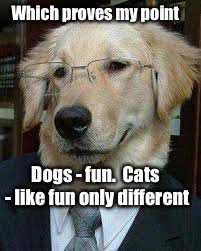 Which proves my point Dogs - fun.  Cats - like fun only different | made w/ Imgflip meme maker