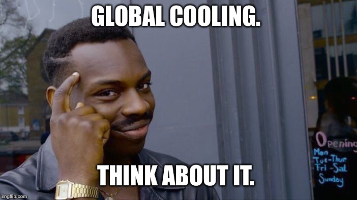Roll Safe Think About It Meme | GLOBAL COOLING. THINK ABOUT IT. | image tagged in memes,roll safe think about it | made w/ Imgflip meme maker