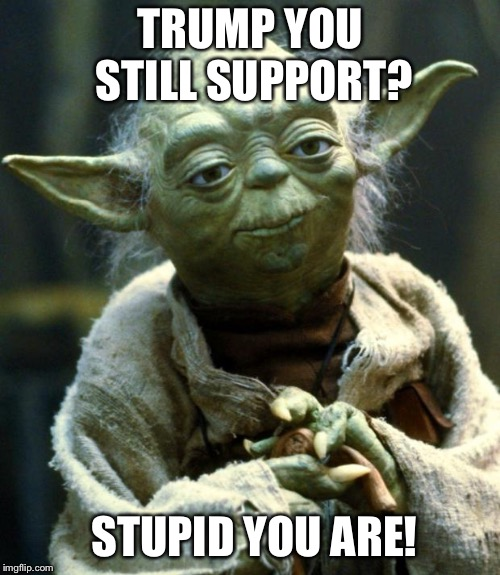 Asshole trump is! | TRUMP YOU STILL SUPPORT? STUPID YOU ARE! | image tagged in memes,star wars yoda,trump supporters are stupid,stupid trump supporters,trump wall,trump shutdown | made w/ Imgflip meme maker