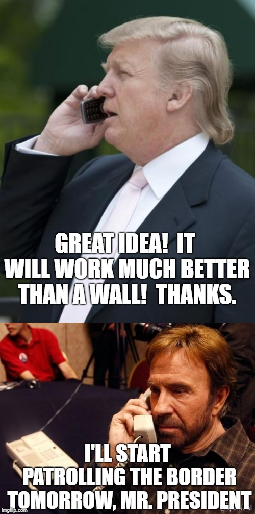 GREAT IDEA!  IT WILL WORK MUCH BETTER THAN A WALL!  THANKS. I'LL START PATROLLING THE BORDER TOMORROW, MR. PRESIDENT | image tagged in memes,chuck norris phone,trump on the phone | made w/ Imgflip meme maker