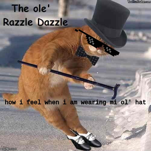 how i feel when i am wearing mi ol' hat | image tagged in the ole razzle dazzle | made w/ Imgflip meme maker