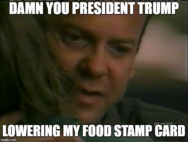 Damn You Trump | DAMN YOU PRESIDENT TRUMP LOWERING MY FOOD STAMP CARD | image tagged in donald trump,government shutdown,republican,democrats | made w/ Imgflip meme maker