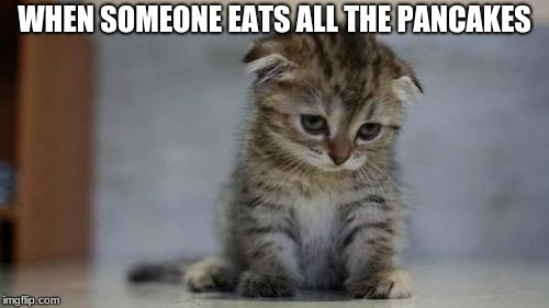 Sad kitten | WHEN SOMEONE EATS ALL THE PANCAKES | image tagged in sad kitten | made w/ Imgflip meme maker