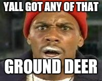 YALL GOT ANY OF THAT; GROUND DEER | image tagged in crackhead chappelle | made w/ Imgflip meme maker