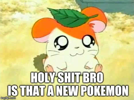 Hamtaro | HOLY SHIT BRO IS THAT A NEW POKEMON | image tagged in memes,hamtaro | made w/ Imgflip meme maker