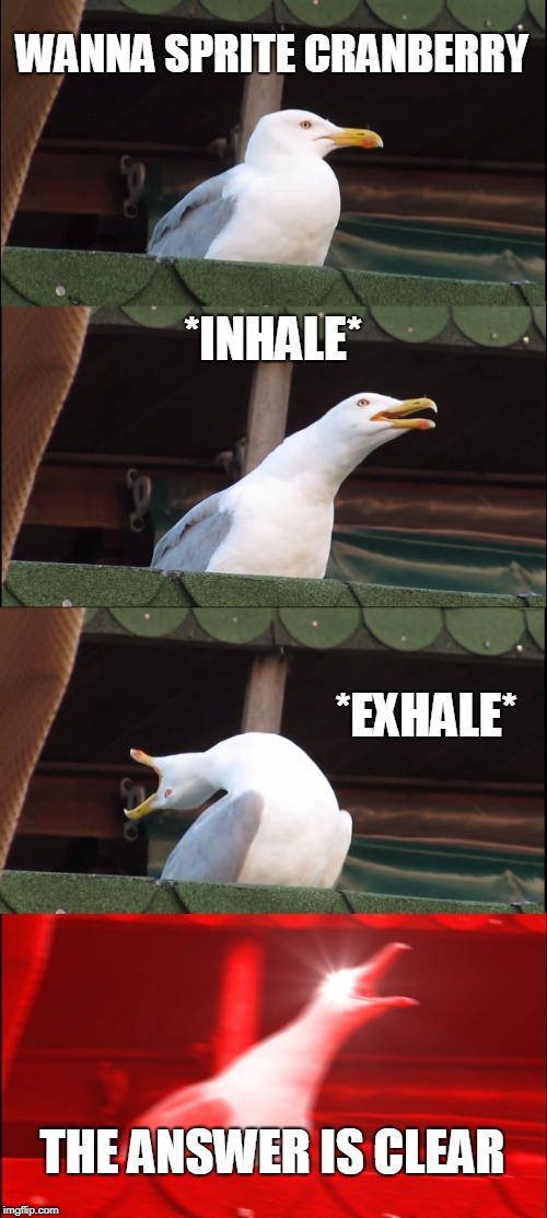 Inhaling Seagull | WANNA SPRITE CRANBERRY *INHALE* *EXHALE* THE ANSWER IS CLEAR | image tagged in memes,inhaling seagull | made w/ Imgflip meme maker