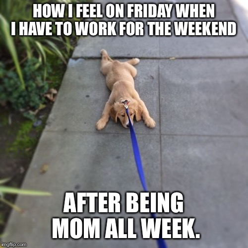 HOW I FEEL ON FRIDAY WHEN I HAVE TO WORK FOR THE WEEKEND AFTER BEING MOM ALL WEEK. | image tagged in tired puppy | made w/ Imgflip meme maker