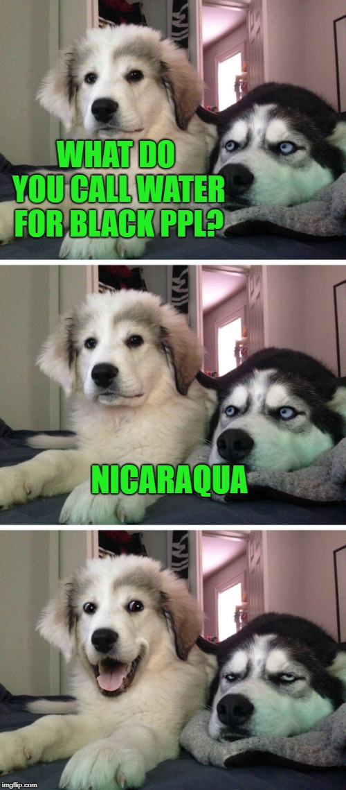Dog bad joke | WHAT DO YOU CALL WATER FOR BLACK PPL? NICARAQUA | image tagged in dog bad joke | made w/ Imgflip meme maker