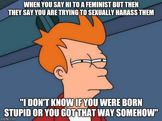 "Futurama Fry Meme | WHEN YOU SAY HI TO A FEMINIST BUT THEN THEY SAY YOU ARE TRYING TO SEXUALLY HARASS THEM ""I DON'T KNOW IF YOU WERE BORN STUPID OR YOU GOT THAT 