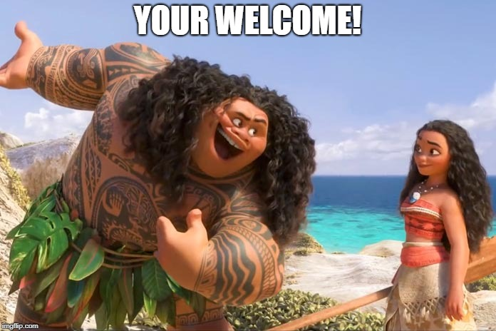 Moana Maui You're Welcome | YOUR WELCOME! | image tagged in moana maui you're welcome | made w/ Imgflip meme maker
