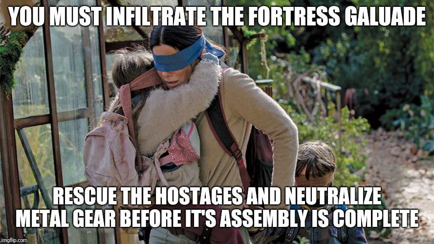 Infiltrate the Fortress | YOU MUST INFILTRATE THE FORTRESS GALUADE RESCUE THE HOSTAGES AND NEUTRALIZE METAL GEAR BEFORE IT'S ASSEMBLY IS COMPLETE | image tagged in bird box,sandra bullock,metal gear solid | made w/ Imgflip meme maker