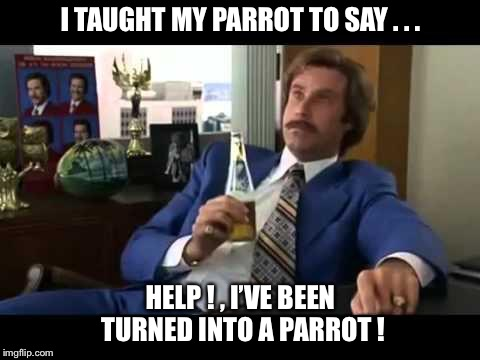 Well That Escalated Quickly | I TAUGHT MY PARROT TO SAY . . . HELP ! , I'VE BEEN TURNED INTO A PARROT ! | image tagged in memes,well that escalated quickly | made w/ Imgflip meme maker