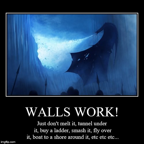 WALLS WORK! | Just don't melt it, tunnel under it, buy a ladder, smash it, fly over it, boat to a shore around it, etc etc etc... | image tagged in funny,demotivationals | made w/ Imgflip demotivational maker