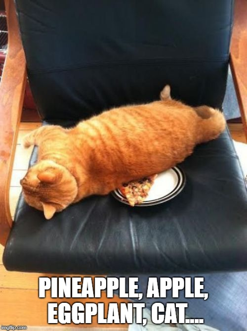 PINEAPPLE, APPLE, EGGPLANT, CAT.... | image tagged in pineapple pizza | made w/ Imgflip meme maker