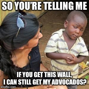 so youre telling me | SO YOU'RE TELLING ME IF YOU GET THIS WALL, I CAN STILL GET MY ADVOCADOS? | image tagged in so youre telling me | made w/ Imgflip meme maker