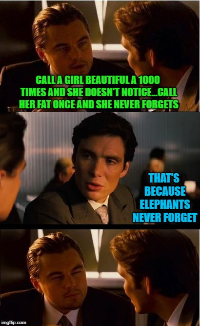 For the record, there's nothing wrong with a thick girl...just don't be callin' her thick!!! | CALL A GIRL BEAUTIFUL A 1000 TIMES AND SHE DOESN'T NOTICE...CALL HER FAT ONCE AND SHE NEVER FORGETS THAT'S BECAUSE ELEPHANTS NEVER FORGET | image tagged in memes,inception,compliments,funny,insults,regret | made w/ Imgflip meme maker