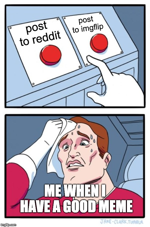 which site???? | post to reddit post to imgflip ME WHEN I HAVE A GOOD MEME | image tagged in memes,two buttons,funny,reddit,imgflip,good memes | made w/ Imgflip meme maker