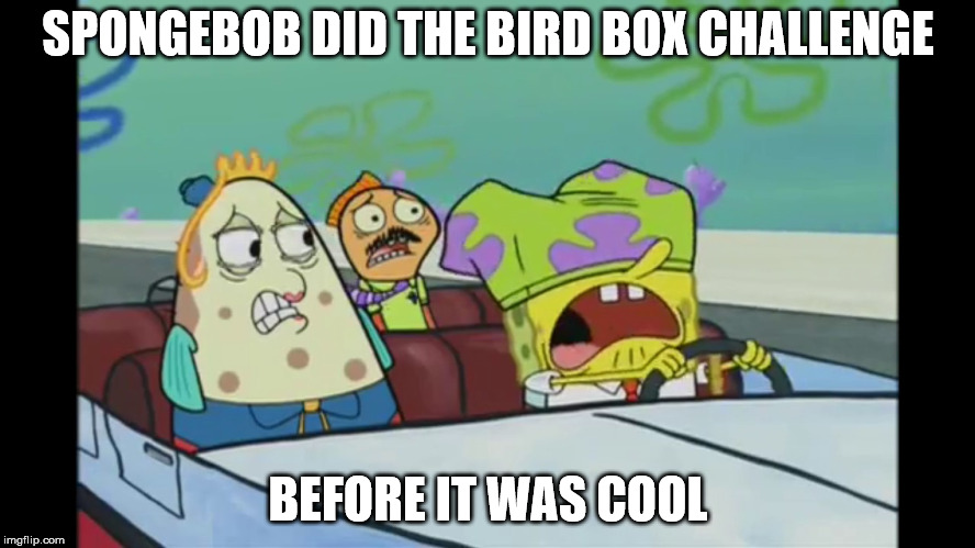 Spongebob Bird Box Challenge | SPONGEBOB DID THE BIRD BOX CHALLENGE BEFORE IT WAS COOL | image tagged in spongebob,bird box,imgflip,funny,memes | made w/ Imgflip meme maker
