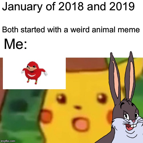 January of 2018 and 2019 Both started with a weird animal meme Me: | image tagged in surprised pikachu | made w/ Imgflip meme maker