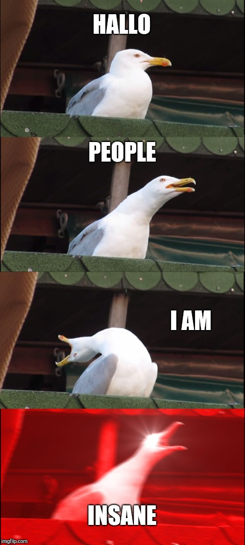Inhaling Seagull Meme | HALLO PEOPLE I AM INSANE | image tagged in memes,inhaling seagull | made w/ Imgflip meme maker