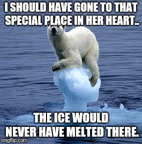 Global Warming Polar Bear | I SHOULD HAVE GONE TO THAT SPECIAL PLACE IN HER HEART.. THE ICE WOULD NEVER HAVE MELTED THERE. | image tagged in global warming polar bear | made w/ Imgflip meme maker