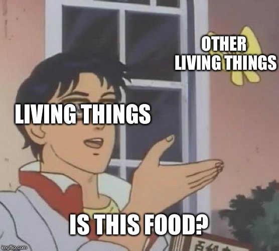 Is This A Pigeon Meme | LIVING THINGS OTHER LIVING THINGS IS THIS FOOD? | image tagged in memes,is this a pigeon | made w/ Imgflip meme maker