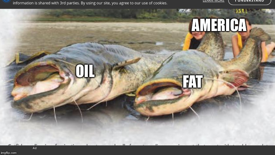 America caught two giant fish to fry | AMERICA OIL FAT | image tagged in america,american,united states of america,oil,fat | made w/ Imgflip meme maker