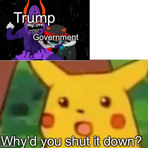 Trump is Gamzee and Terezi is the government | Trump Government Why'd you shut it down? | image tagged in memes,surprised pikachu | made w/ Imgflip meme maker