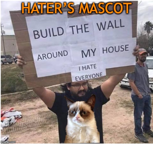 You don't need to be political |  HATER'S MASCOT | image tagged in haters,build a wall,grumpy cat | made w/ Imgflip meme maker