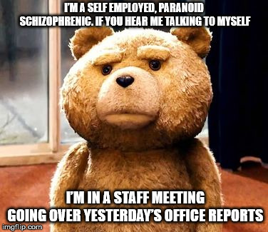 TED Meme | I'M A SELF EMPLOYED, PARANOID SCHIZOPHRENIC. IF YOU HEAR ME TALKING TO MYSELF I'M IN A STAFF MEETING GOING OVER YESTERDAY'S OFFICE REPORTS | image tagged in memes,ted | made w/ Imgflip meme maker