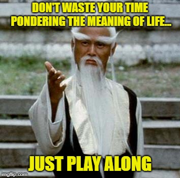 Just As You Would With Any Game | DON'T WASTE YOUR TIME PONDERING THE MEANING OF LIFE... JUST PLAY ALONG | image tagged in asian old wise man,meaning of life,play the game,memes | made w/ Imgflip meme maker