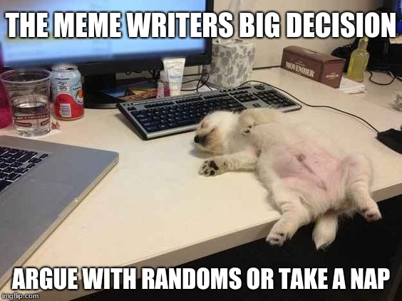 writing meme's, the struggle is real | THE MEME WRITERS BIG DECISION ARGUE WITH RANDOMS OR TAKE A NAP | image tagged in napping,nap,memes,sleep heals | made w/ Imgflip meme maker