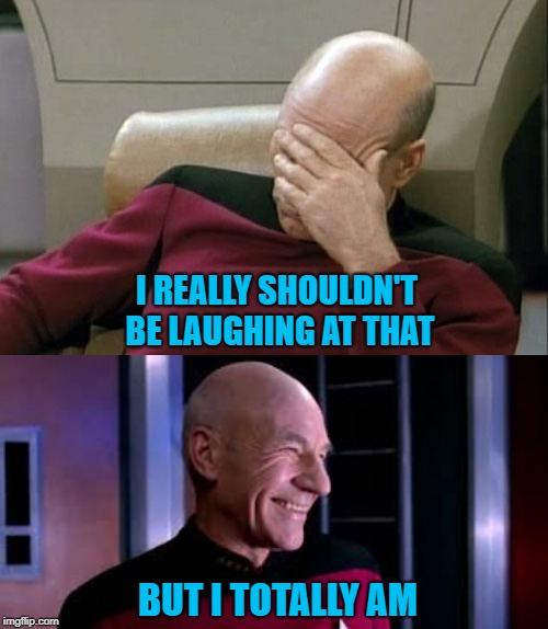 I REALLY SHOULDN'T BE LAUGHING AT THAT BUT I TOTALLY AM | image tagged in memes,captain picard facepalm | made w/ Imgflip meme maker