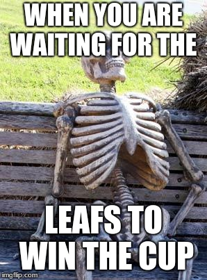 Waiting Skeleton | WHEN YOU ARE WAITING FOR THE LEAFS TO WIN THE CUP | image tagged in memes,waiting skeleton | made w/ Imgflip meme maker
