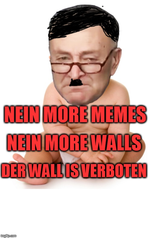 Ver bist eva von pelosi? | NEIN MORE MEMES DER WALL IS VERBOTEN NEIN MORE WALLS | image tagged in chuck schumer baby,border wall,memes | made w/ Imgflip meme maker