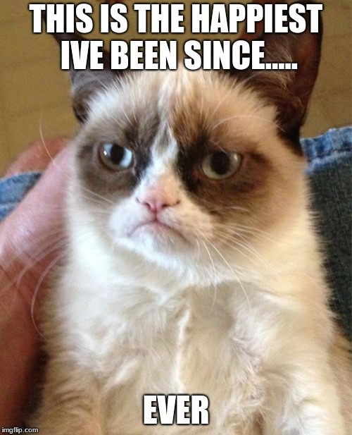 Grumpy Cat | THIS IS THE HAPPIEST IVE BEEN SINCE..... EVER | image tagged in memes,grumpy cat | made w/ Imgflip meme maker