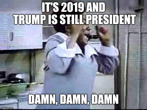 Good Times | IT'S 2019 AND TRUMP IS STILL PRESIDENT DAMN, DAMN, DAMN | image tagged in good times | made w/ Imgflip meme maker