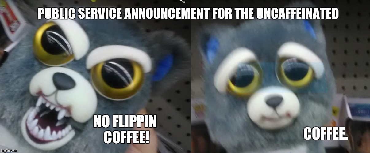 PSA for the uncaffeinated  | NO FLIPPIN COFFEE! COFFEE. PUBLIC SERVICE ANNOUNCEMENT FOR THE UNCAFFEINATED | image tagged in funny,funny memes,memes,coffee addict,coffee | made w/ Imgflip meme maker
