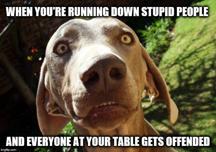 WHEN YOU'RE RUNNING DOWN STUPID PEOPLE AND EVERYONE AT YOUR TABLE GETS OFFENDED | image tagged in uh oh | made w/ Imgflip meme maker
