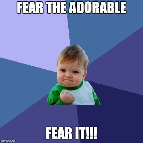Success Kid | FEAR THE ADORABLE FEAR IT!!! | image tagged in memes,success kid | made w/ Imgflip meme maker
