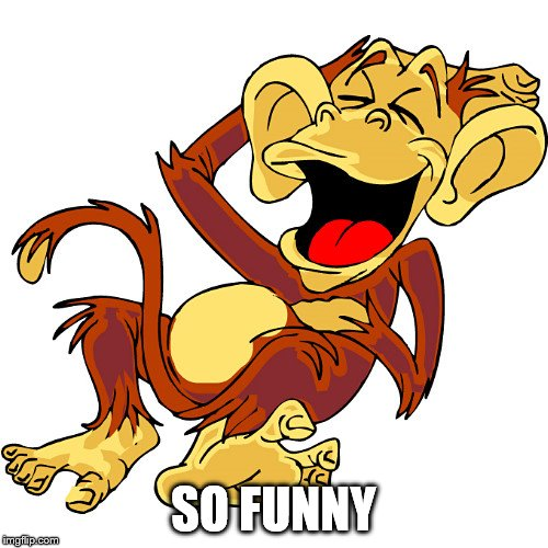 laughing monkey | SO FUNNY | image tagged in laughing monkey | made w/ Imgflip meme maker