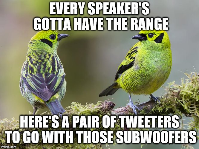 EVERY SPEAKER'S GOTTA HAVE THE RANGE HERE'S A PAIR OF TWEETERS TO GO WITH THOSE SUBWOOFERS | made w/ Imgflip meme maker