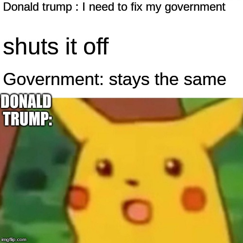 Surprised Pikachu Meme | Donald trump : I need to fix my government shuts it off Government: stays the same DONALD TRUMP: | image tagged in memes,surprised pikachu | made w/ Imgflip meme maker